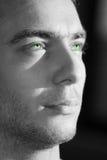 Blickleuchte der grünen Augen Stockfoto