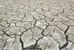 bliende cracked torr jordning för öken Fotografering för Bildbyråer