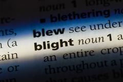 Blight. Word in a dictionary.  concept Royalty Free Stock Image