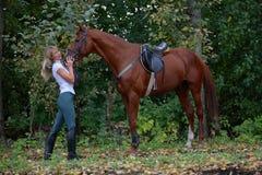 Blij meisje het berijden paard in bos Stock Foto's