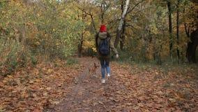 Blij meisje met hond die in de herfstpark lopen stock footage