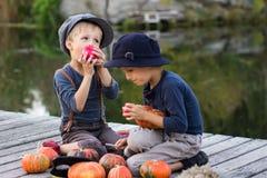 Blije jongens die met pompoenen en appelen zitten Royalty-vrije Stock Afbeeldingen