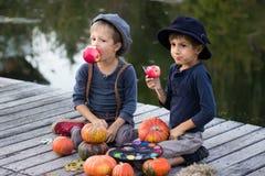 Blije jongens die met pompoenen en appelen zitten Royalty-vrije Stock Afbeelding