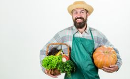 Blije stemming gebaarde rijpe landbouwer seizoengebonden vitaminevoedsel Nuttige fruit en groente Organisch en natuurvoeding gelu royalty-vrije stock afbeeldingen