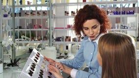 Blije vrouwelijke kapper die met haar cliënt bij de schoonheidssalon werken royalty-vrije stock afbeelding
