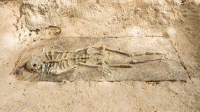 Blijft van een Skelet in Krabi, Thailand Royalty-vrije Stock Fotografie