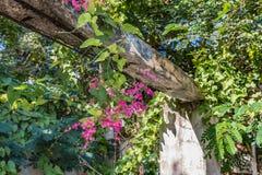 Blijft van een structuur met vegetatie en bloemen Stock Fotografie