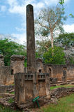 Blijft van Gede in Kenia, Afrika royalty-vrije stock foto