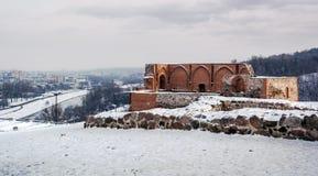 Blijft van het Levensonderhoud van het Hogere Kasteel in Vilnius stock foto's