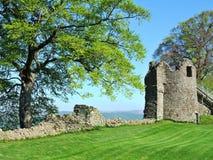 Blijft van kasteel Kendal Stock Foto