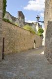 Blijft van klooster Royalty-vrije Stock Fotografie