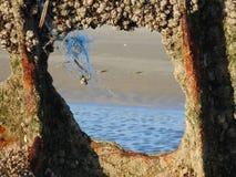 Blijft van schipbreuk op zand 12 wordt verspreid die stock afbeeldingen