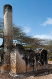 Blijft van Takwa in het Lamu-District in Kenia royalty-vrije stock afbeelding