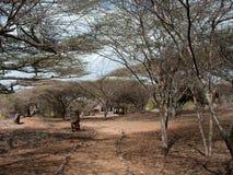 Blijft van Takwa in het Lamu-District in Kenia stock afbeelding