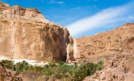 Blijven stilstaan bedouin in een oase in de woestijn onder de bergen in van Zuid- Egypte Dahab Sinai stock afbeelding