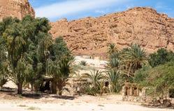 Blijven stilstaan bedouin in een oase in de woestijn onder de bergen in van Zuid- Egypte Dahab Sinai royalty-vrije stock foto's