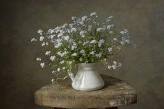 Blik-omhoog-en-kus-me bloemen Stock Foto