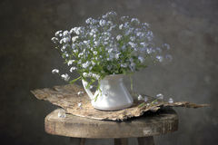 Blik-omhoog-en-kus-me bloemen Royalty-vrije Stock Foto's