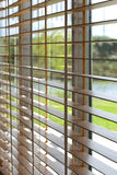 Blind. Venetian blind on a window inside of a house Royalty Free Stock Image
