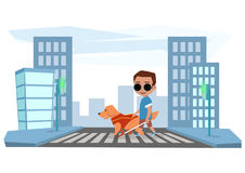 Blind boy crosses road with a guide dog Royalty Free Stock Photography