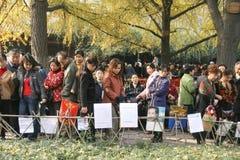 Blind-Date in einem Park, Chengdu, Porzellan Stockbild