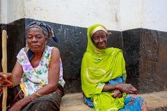 Blind lady och henne vän Arkivbilder