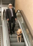 Blind man with guide dog. On escalator Stock Images