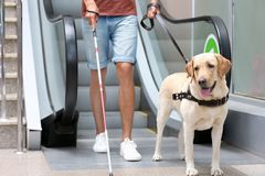 Blind man with guide dog. Near escalator Stock Images