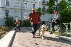 Blind man and guide dog Stock Image