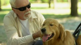 Blind owner feeding and petting his guide dog, best friend and assistance. Stock footage stock video