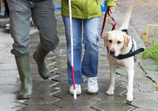 Blind person with her guide dog Royalty Free Stock Photos