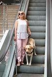 Blind woman with guide dog. On escalator Stock Photo