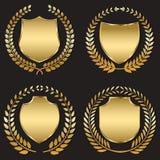 Blindaje de oro Imagen de archivo libre de regalías