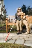 Blinde Frau mit einem Blindenhund Lizenzfreies Stockbild