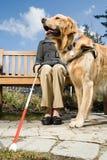 Blinde Frau und ein Blindenhund Stockfotos