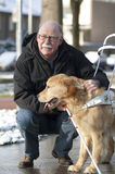 Blindenhund hilft einem blinden Mann Stockbild