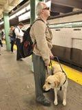 Blindenhund und Mann in der U-Bahn Lizenzfreie Stockbilder