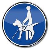 Blinder Hund auf einer Leine für Blinde Lizenzfreies Stockbild