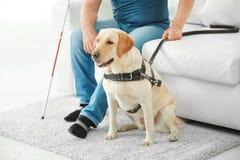 Blinder mit dem Blindenhund, der auf Sofa sitzt Lizenzfreie Stockbilder