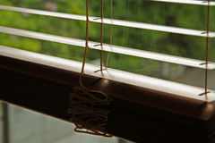 Blinds. Metal window blinds. Golden color window blinds Stock Images