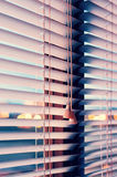 Blinds on the window Royalty Free Stock Image