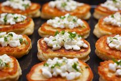 Blinis with cottage cheese. Blinis (from white flour) with cottage cheese and chopped parsley Stock Photos