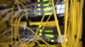 Blink light. Many Yellow optical cables in server rack. Blurred background. Video contains noise and flicker.  stock footage
