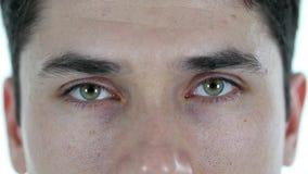 Blinkenaugen des Mannes, auf weißem Hintergrund Lizenzfreie Stockfotografie