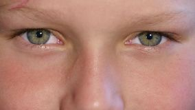 Blinking Eyes Of Child. Blinking Green Eyes of Child, Kid Eyeball, Point of View of Girl, Children stock footage