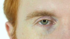 Blinking Green Eye of Red Hair Beard Man, Close Up stock footage