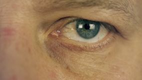 Blinking man eye. Man left eye extreme close up macro view male face. Man read. Looking information. Smiling face. Eye stock video footage