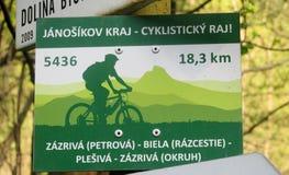 Blinklichtpfeil für bycicle Spur Lizenzfreie Stockfotos