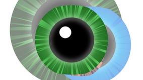 Blinzeln von menschlichen Augen lizenzfreie abbildung