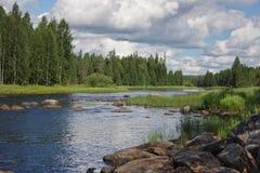 Blir grund på den Suna floden i Karelia, Ryssland Arkivfoton